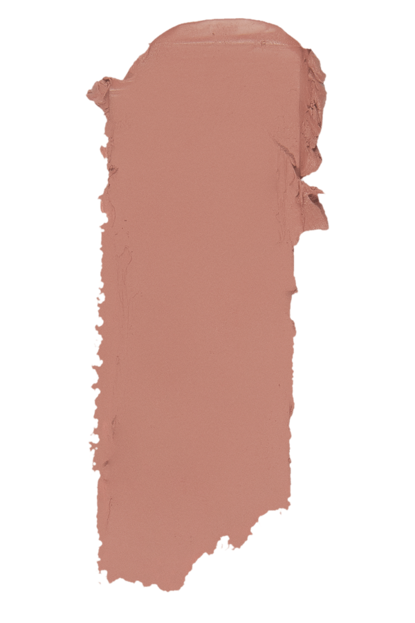 ROUGE A LEVRE INSTYLE MAT TOPFACE 001 PT155